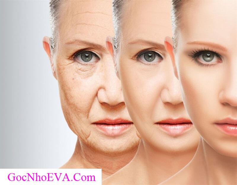 Cách chống lão hóa da mặt sớm Hiệu Quả nhất 2018