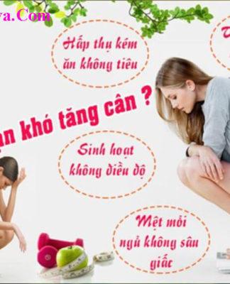 Viên tăng cân Hoa Bảo lừa đảo không?