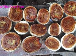 Phân biệt gỗ sưa Quảng Bình thật giả đơn giản nhất