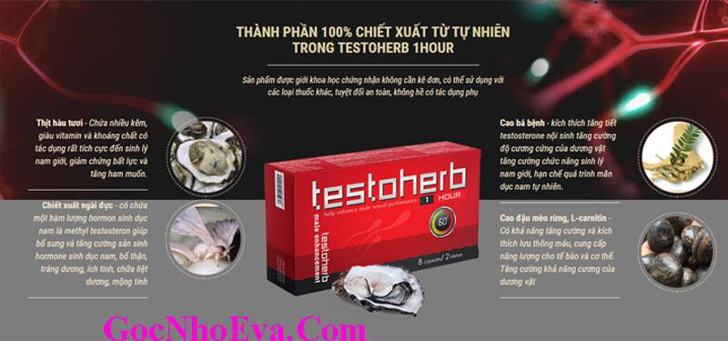 Thành phần chính thuốc Testoherb 1hour