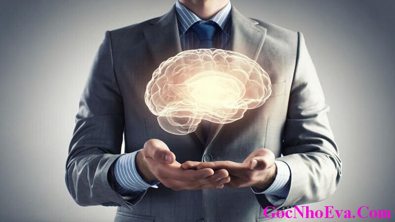 Viên thuốc bổ não Neurovidan chính hãng