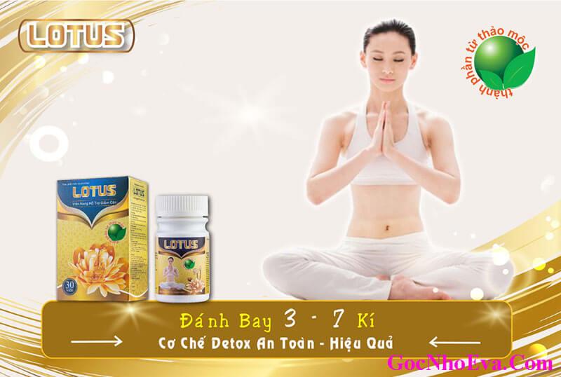 Viên thảo dược giảm cân Lotus chính hãng