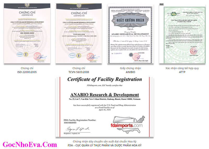 Giấy phép kinh doanh và giấy chứng nhận Skin Fresh
