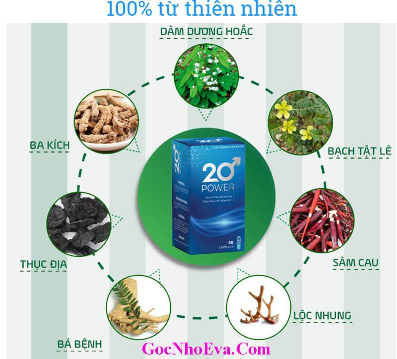 Thành phần chính Viên uống tăng cường sinh lý 20 Power chính hãng