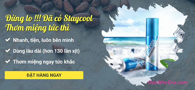 giá staycool