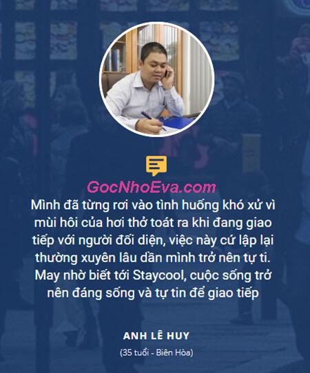 phản hồi về staycool