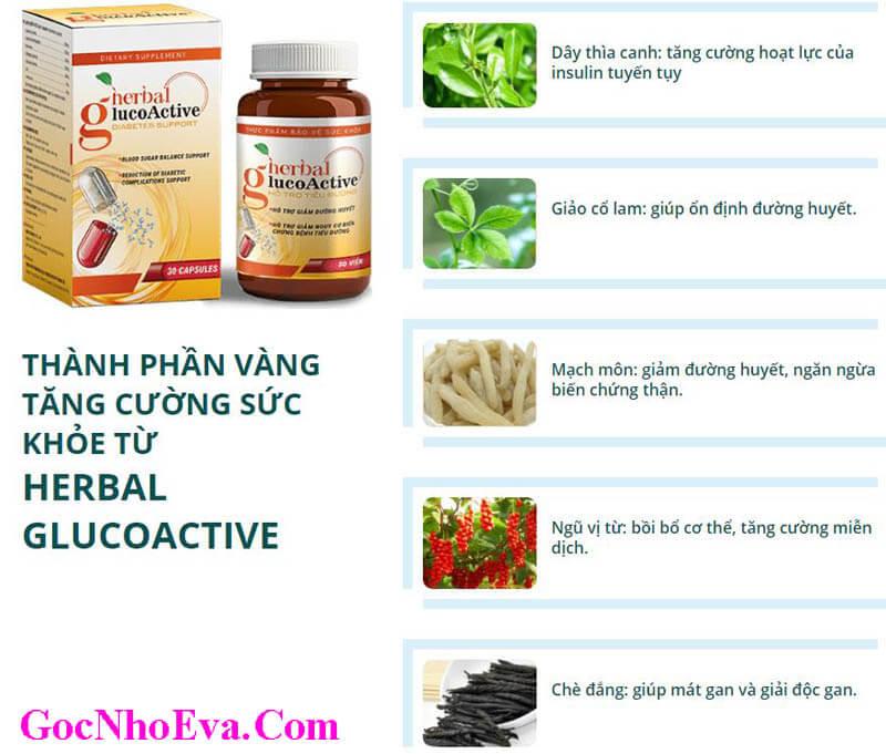 Thành Phần Thuốc Herbal GlucoActive Chính Hãng